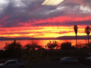 TMJ Oakland Alameda Office View
